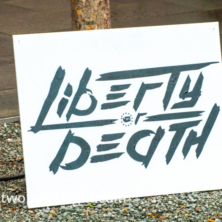 Seattle, Liberty or Death 2 Rally, Liberty or Death Placard