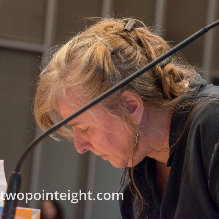Seattle City Council, March 18, 2019, A Woman Signed Up to Testify About The Affordable Housing Ordinance